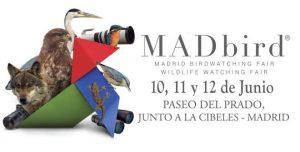 madbird2016logo