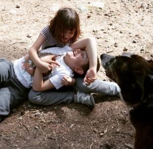 Mi hijo, que tiene autismo, 'sufriendo e infeliz' con su hermana.