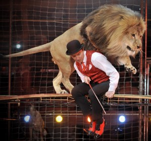 A lion jumps over Ukraine's Vladislav Goncharov during a rehearsal for the final show of the 8th International Circus Festival in Budapest, Hungary, Friday, Jan. 29, 2010.