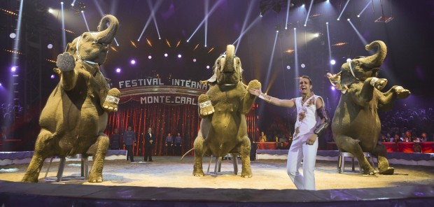 39Th Montecarlo Circus Festival Principaut de Monaco 15 January 2015 Elefantes