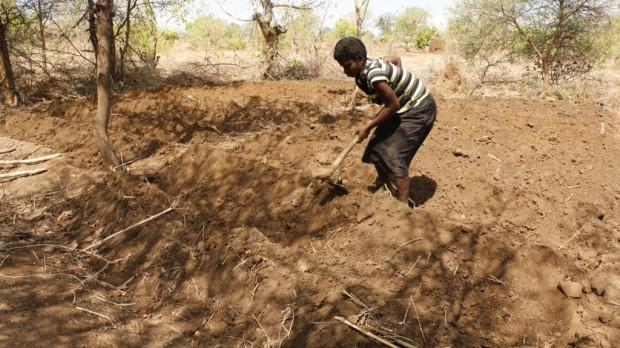 El cambio climático expone a los granjeros de Malawi a una hambruna