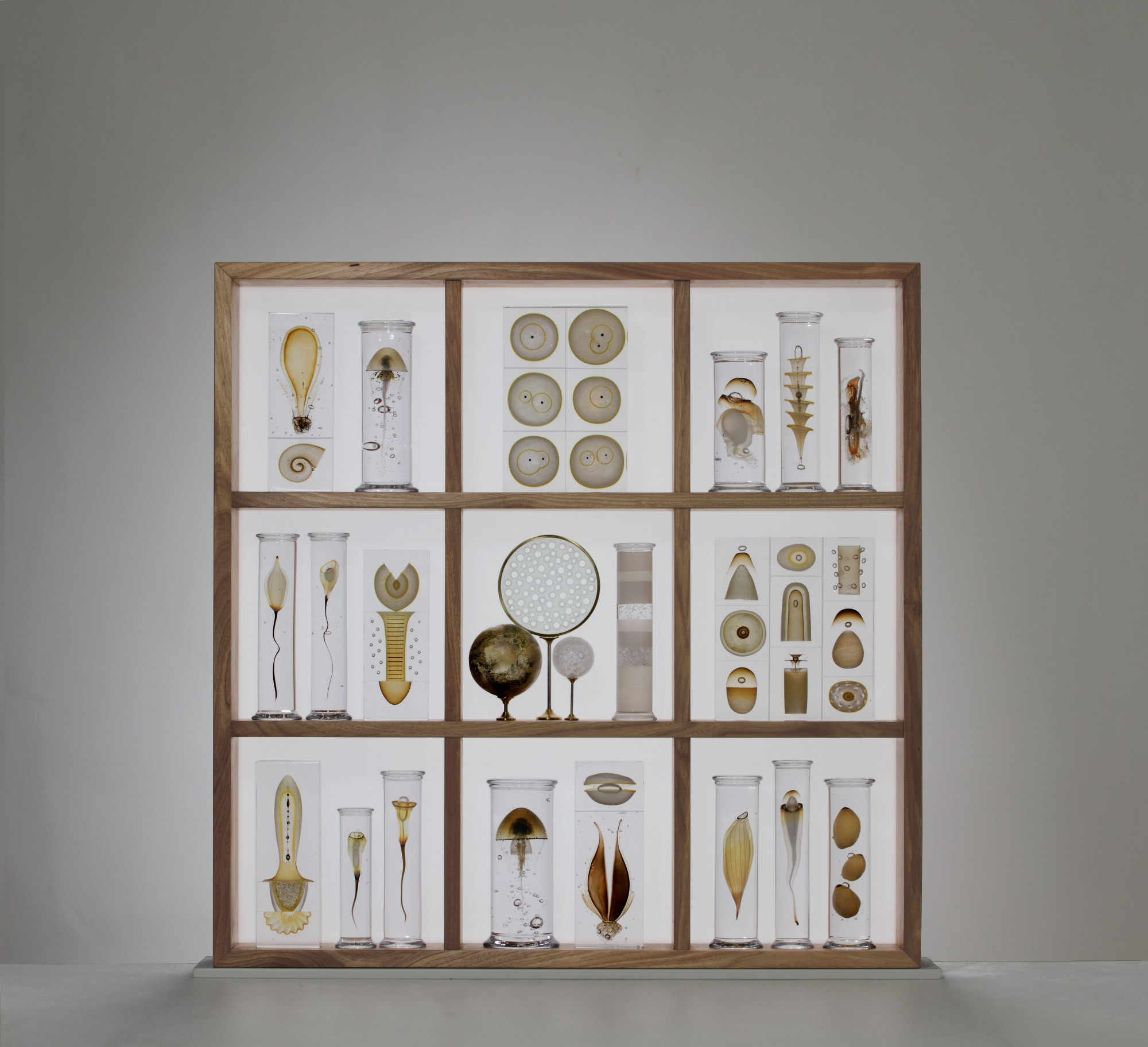 'Cabinet of curiosities' - Steffen Dam - Joanna Bird Gallery, London