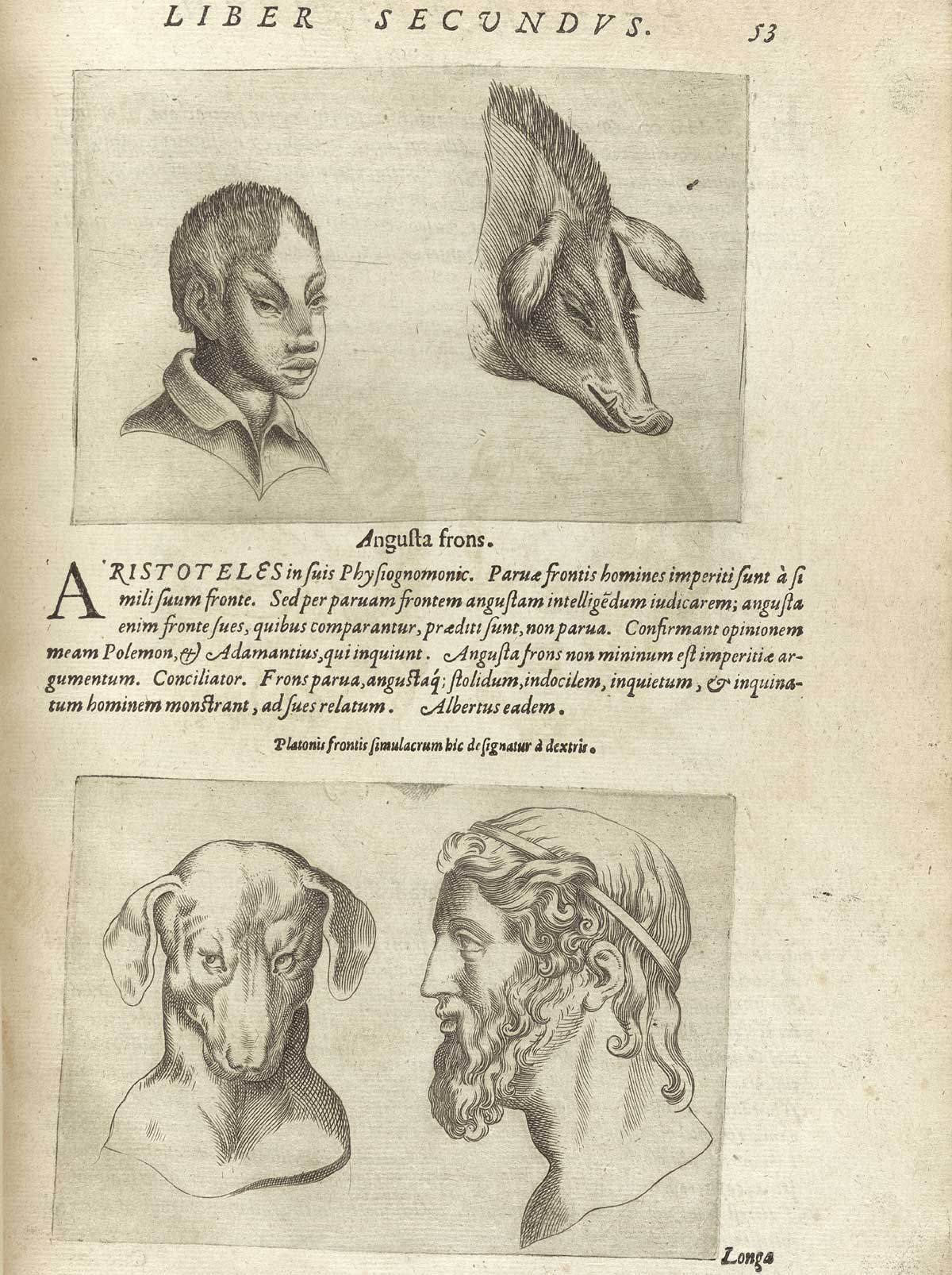 'De humana physiognomia' - Giambattista della Porta