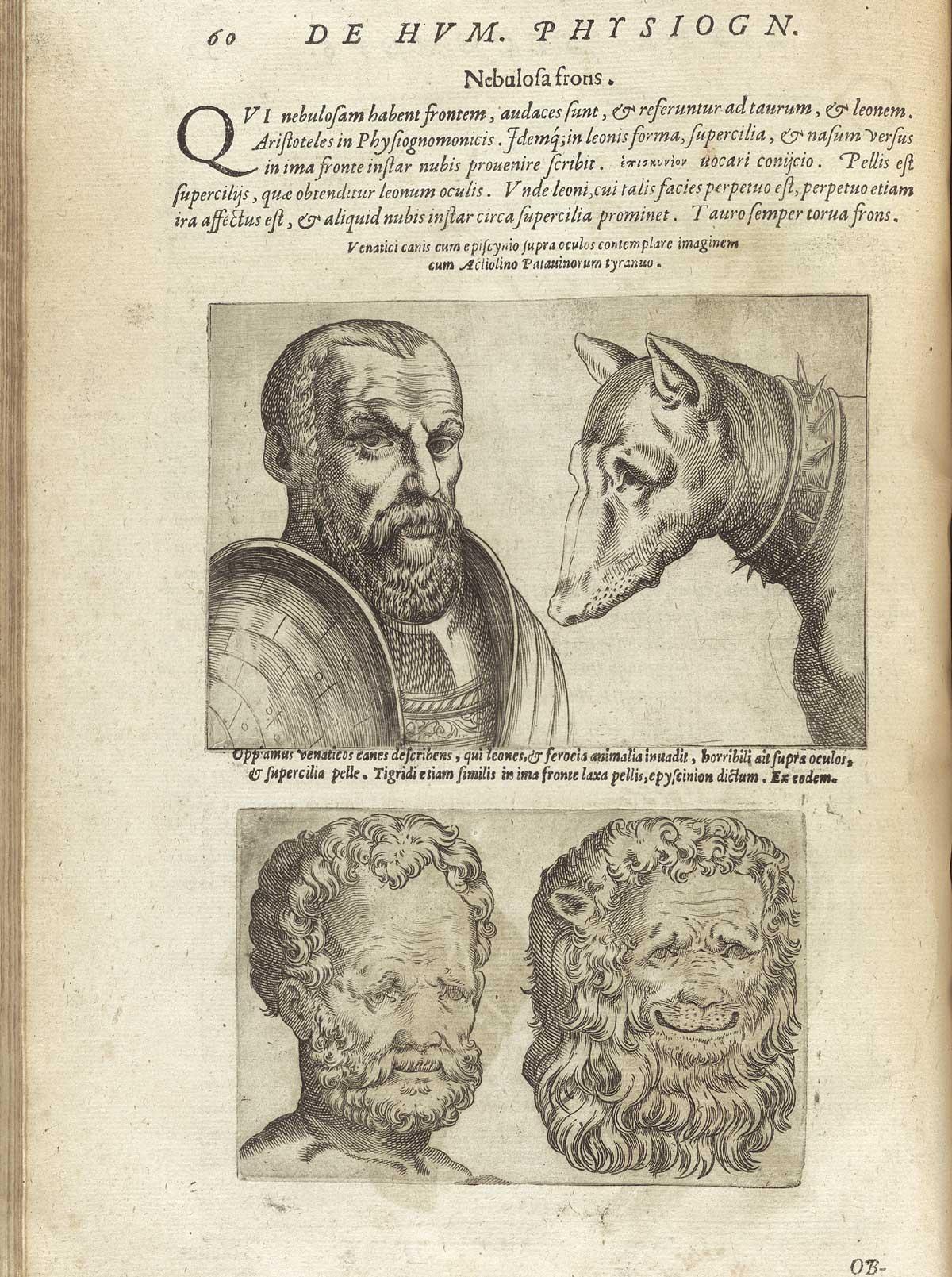 'De humana physiognomia' - 'De humana physiognomia' - Giambattista della Porta