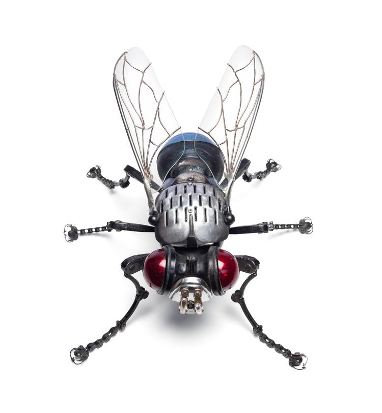 'Fly' - Edouard Martinet