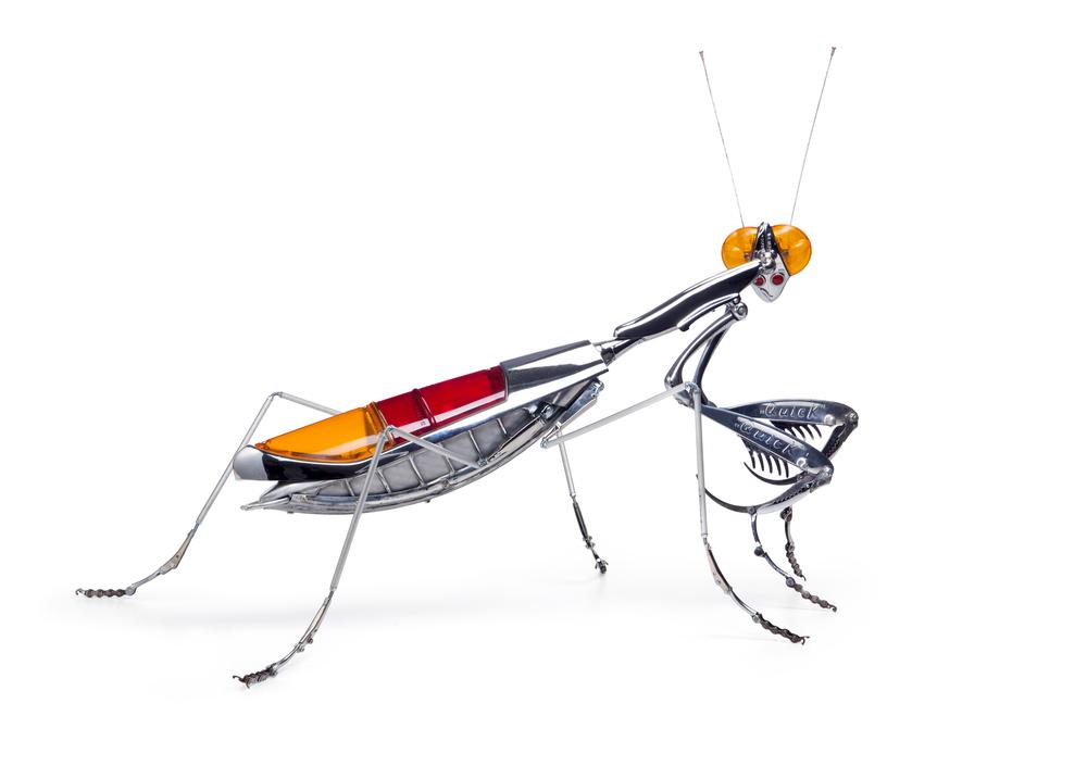 'Praying Mantis' - Edouard Martinet