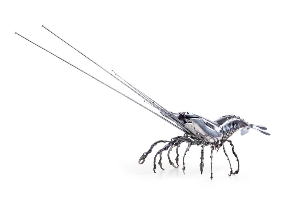 'Shrimp' - Edouard Martinet