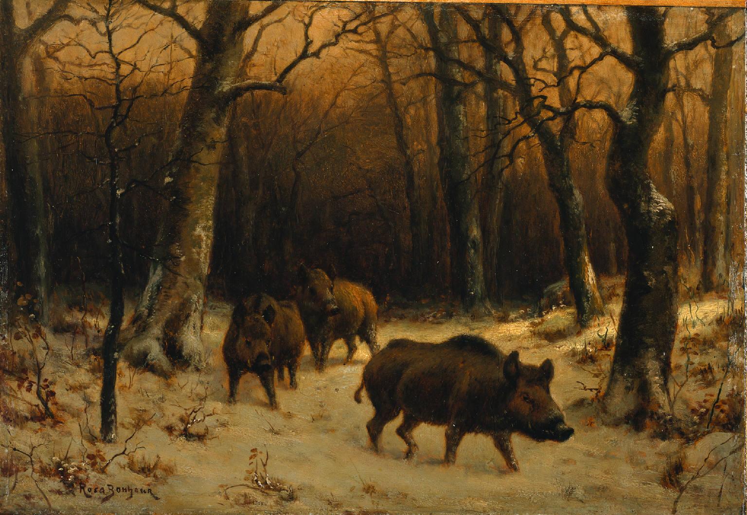 Sangliers dans la neige - Rosa Bonheur, c. 1870 - Dominio público