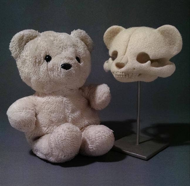 'Ursulus melias' y el oso original utilizado por la artista - © 2016 Stephanie Metz