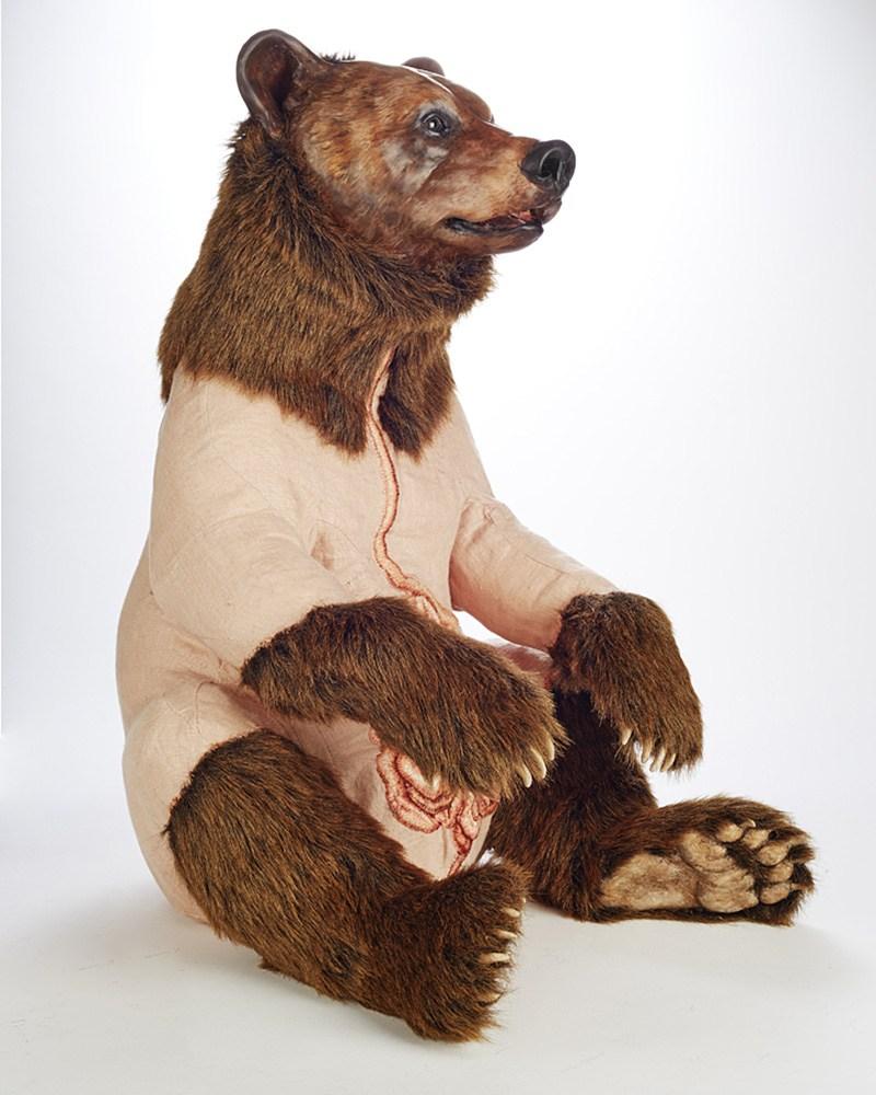 'Ursus arctos horribilus' - Deborah Simon - Foto: Dan Wonderly