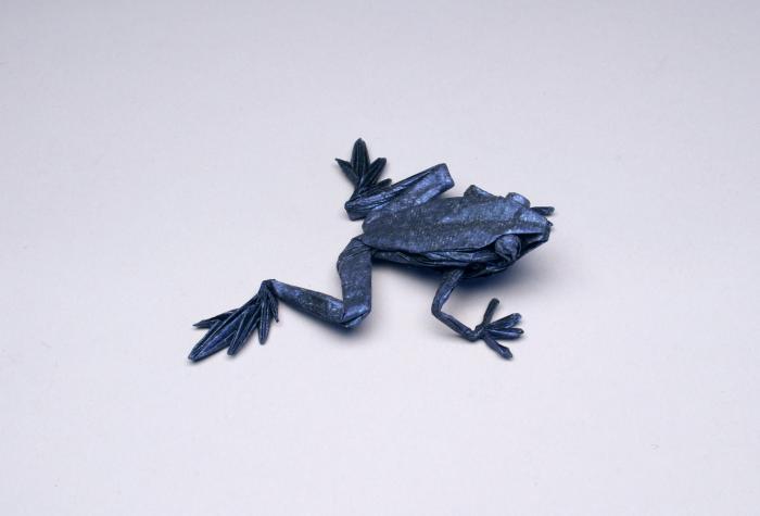 'Poison Dart Frog HP, Opus 598' - Rober J. Lang - Foto: www.langorigami.com