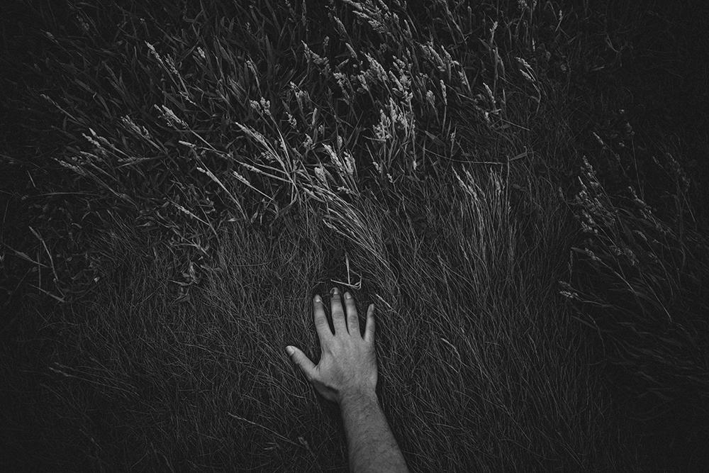 © Alejandra Vacuii