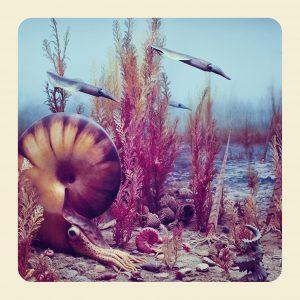 Ammonite. ©Jim Naughten