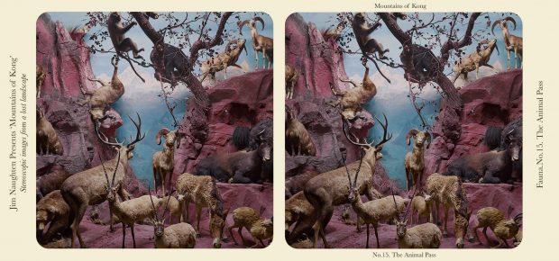 Paso de animales en las cordilleras de Kong. ©Jim Naughten