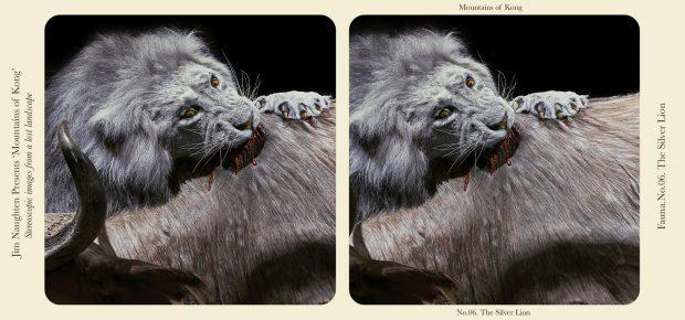 León plateado de las Montañas de Kong. ©Jim Naughten
