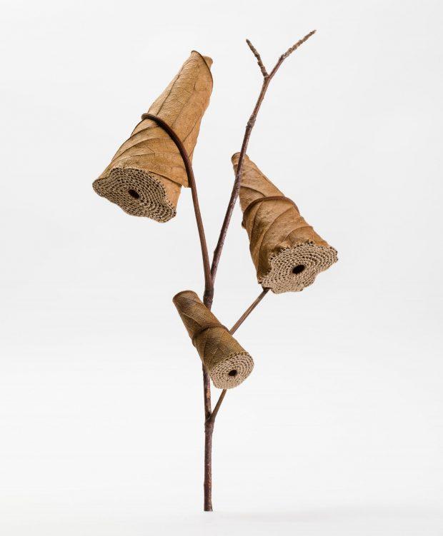 Cone Tree. ©Susanna Bauer. Foto: AP.