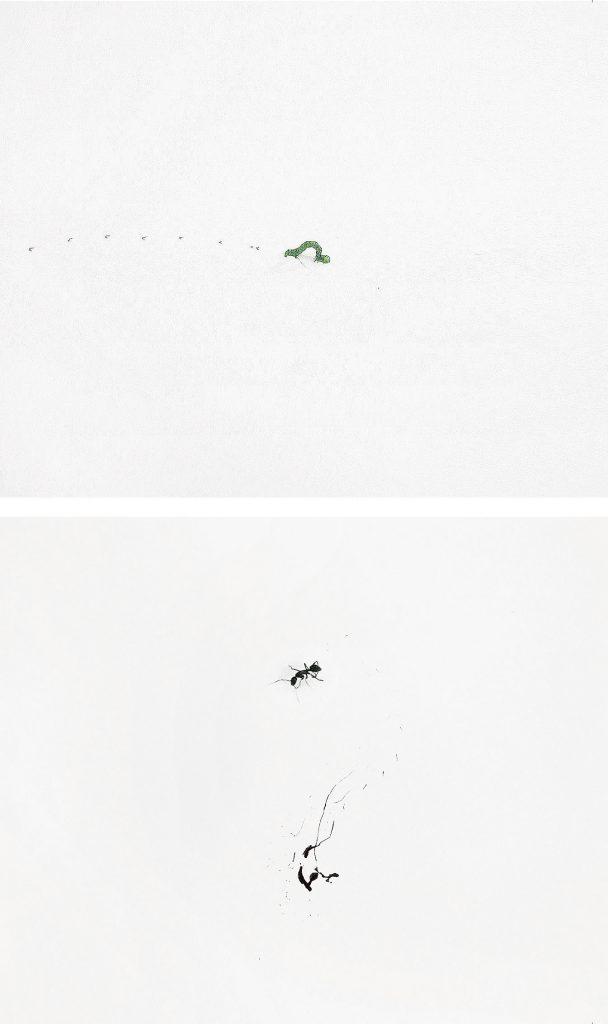 El Lenguaje de los insectos. © Zhu Yingchun. ACC Art Books
