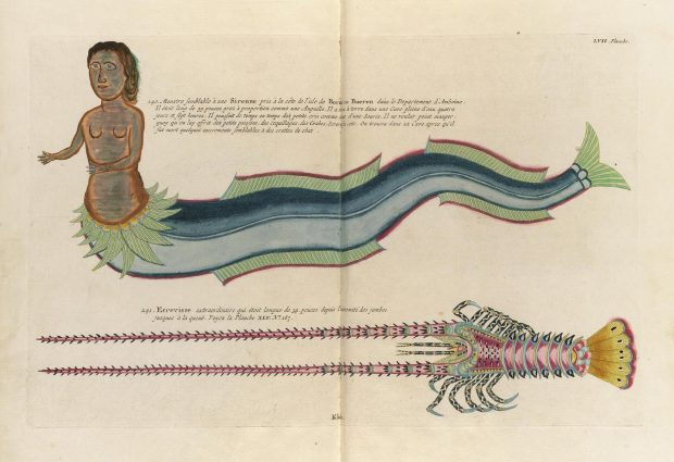 Poissons, Ecrevisses et Crabes. Ernst Mayer Library. 1719.