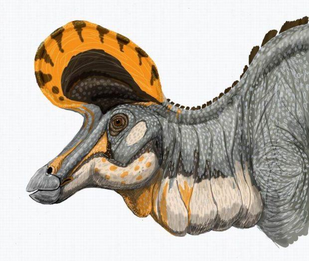Recreación artística de un dinosaurio (Lambeosaurus magnicristatus). Wikimedia Commons.