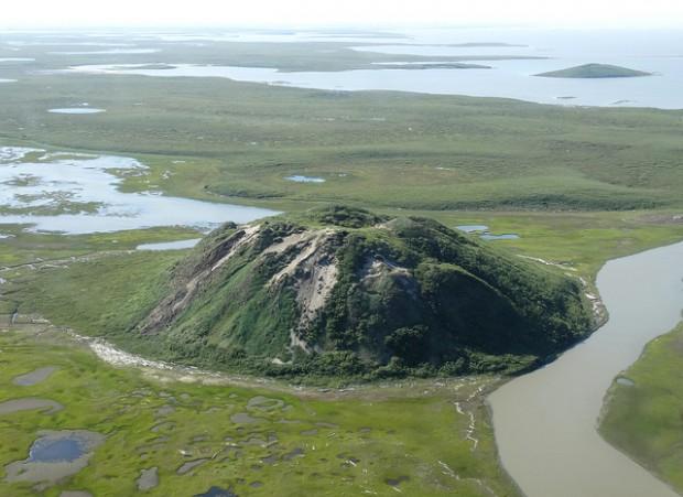 ¿Cuál es el pingo más grande del mundo?