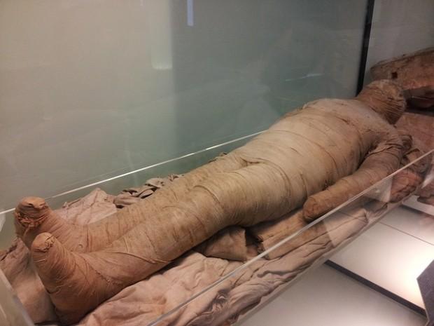 El curioso origen del término 'momia'