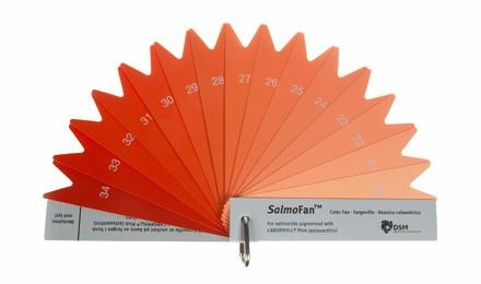 Astaxantina, el pigmento que le proporciona al salmón su característico color (Carta de color del salmón)