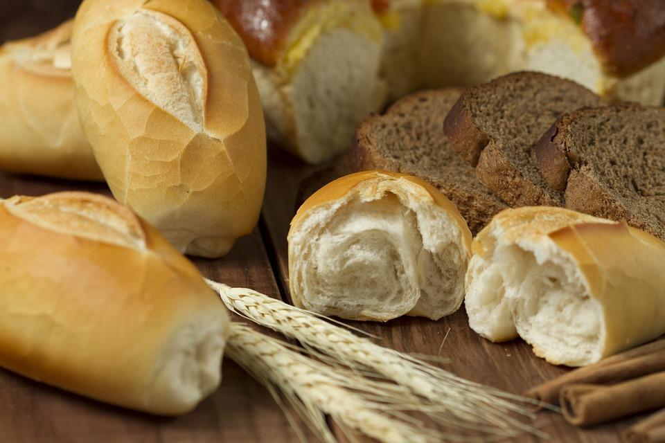 ¿De dónde proviene la expresión 'No sólo de pan vive el hombre'?