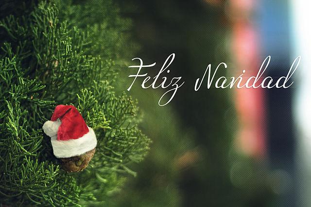 Media docena de curiosidades navideñas (2)