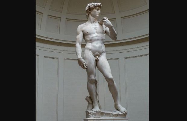 ¿Por qué el pene humano no tiene ningún hueso?