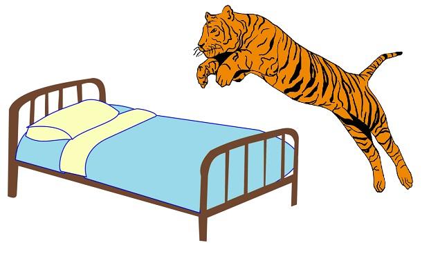 ¿De dónde surge el famoso 'salto del tigre'?