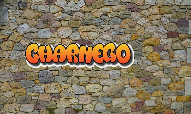 ¿Cuál es el origen del término despectivo 'charnego' (xarnego)?