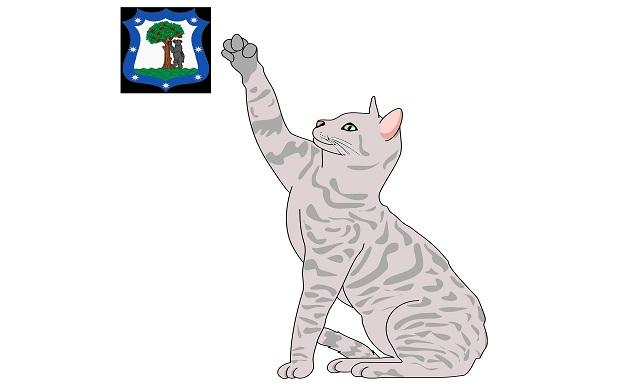 ¿Por qué se les llama 'gatos' a los madrileños?