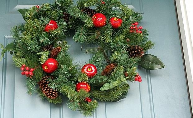 Algunos ornamentos vegetales muy presentes durante el periodo navideño