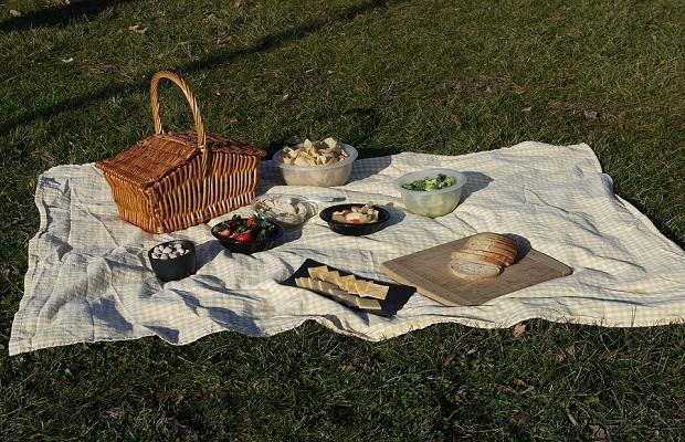 ¿De donde proviene el término 'pícnic'?