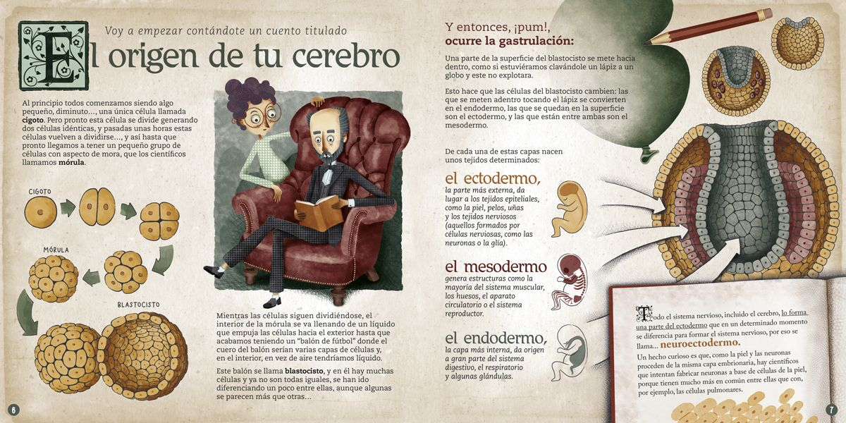 Libro recomendado: 'El cerebro humano. Explicado por Dr. Santiago Ramón y Cajal' de Pablo Barrecheguren e Isa Loureiro