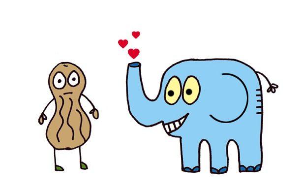 Destripando mitos: No, a los elefantes no les encanta comer cacahuetes