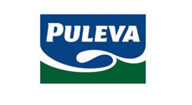 El curioso origen detrás del nombre de famosas marcas: 'PULEVA'