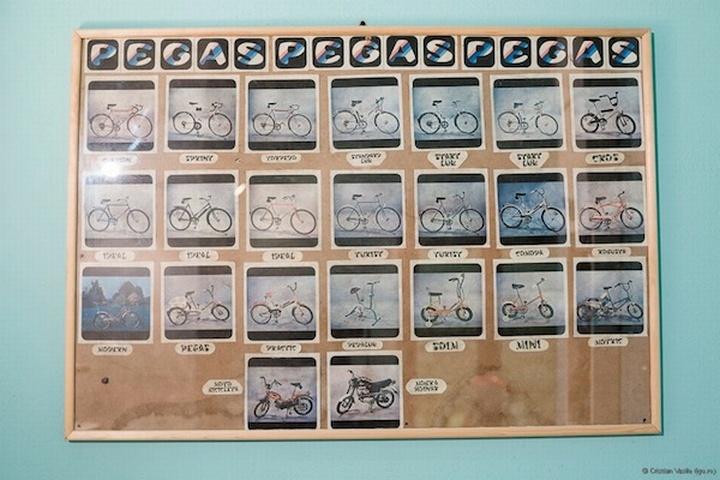 ¿Eres un amante de las bicicletas? ¿Te gustaría ver maravillas de la decoración realizadas mediante upcycling DIY con bicis molonas? Los expertos en todo tipo de reparaciones de averías domésticas de Reparalia te traen inspiración deco para que conviertas tu casa en un homenaje al deporte rey de las dos ruedas y el sacrificio máximo: ciclismo 100% reinando en tu salón, en el mobiliario, la iluminación y todo tipo de complementos.