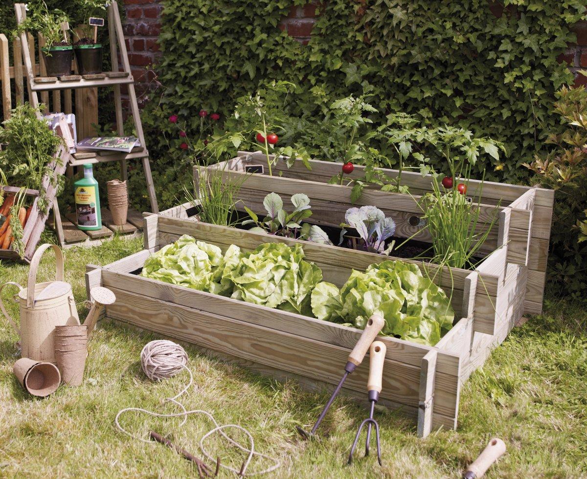 Tomates Un Hogar Con Mucho Oficio ~ Como Cultivar Tomates En El Huerto