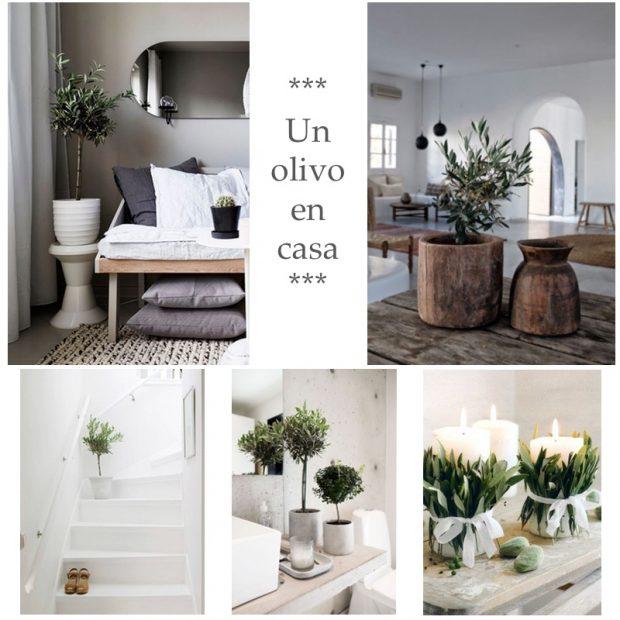 Hoy, entrevista a Yasmina Rodríguez, de Mi casa es Feng, que comparte ideas, trucos y consejos sobre el mundo del Feng Shui en la decoración de tu hogar