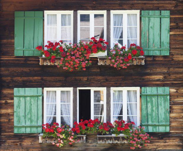 Los expertos en reparaciones de averías del hogar de Reparalia te traen ideas, consejos y trucos para cuidar más y mejor y disfrutar de tu casa cada día.