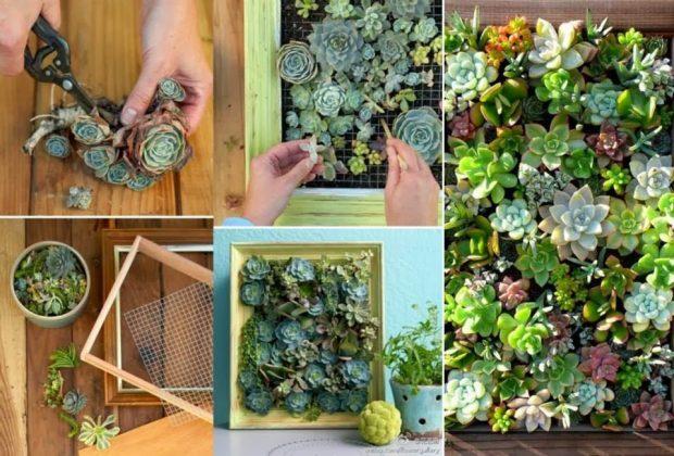Ideas, trucos y consejos para decorar con plantas tu casa, de los profesionales de las reparaciones de todo tipo de averías del hogar de HomeServe.
