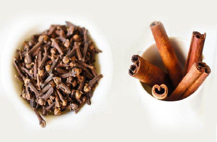 10 Remedios Caseros Y Naturales Para Eliminar Mosquitos Avispas Y Otros Insectos