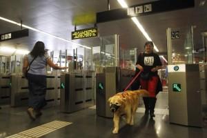 Una usuaria del metro entra en el suburbano de Barcelona acompañada por su mascota (EFE).