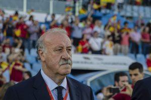 Vicente del Bosque, entrenador de la selección española (Europa Press).