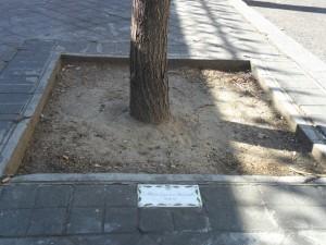 Placa junto a un árbol
