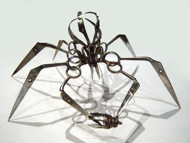 Large Scissor Spider With Captive Bug - Christopher Locke