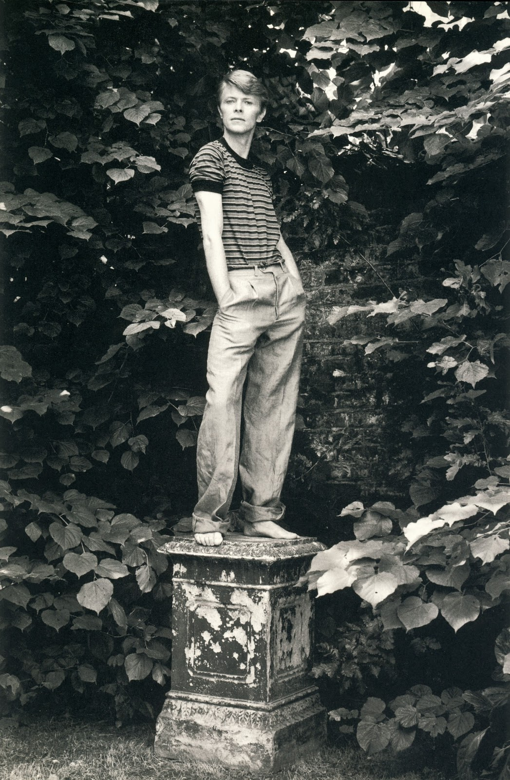 David Bowie retratado por Lord Snowdon, 1978