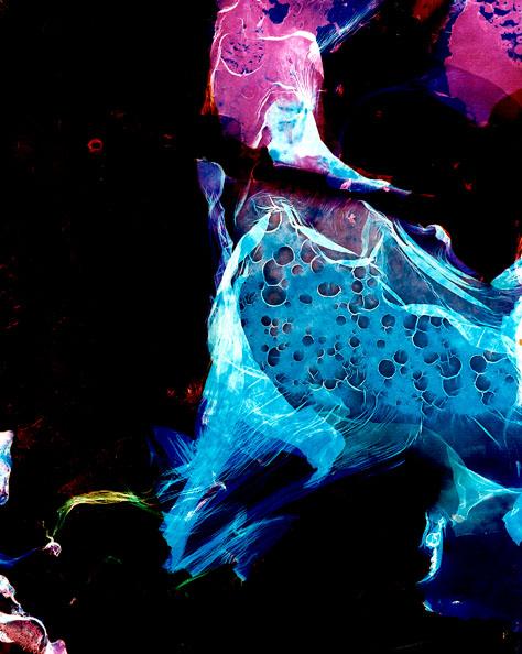 'Bacteriograms 5' - Erno Raitanen