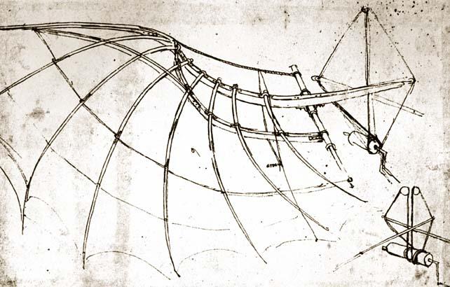 'Estudio de la estructura de un ala' (1490)